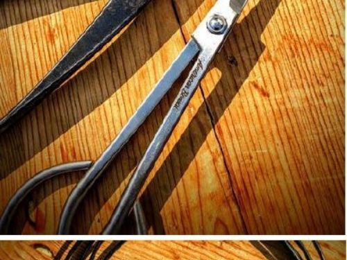 Conifer bonsai tools and wire