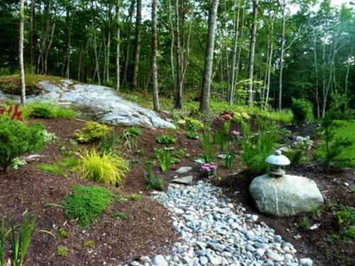 Wynne and Michael Keller's new home, and transplated plants, on their wooded grounds