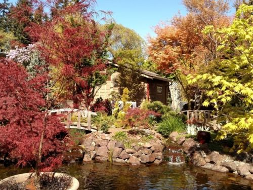 A view of Dan Everts' garden, a new stop during September's regional conference.