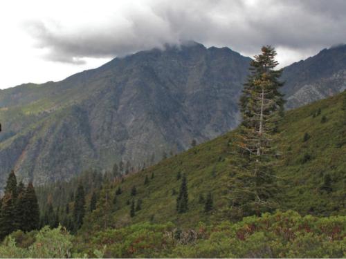 Michael Kauffmann surveys the final climb up the Bear Creek Trail into the Trinity Alps Wilderness