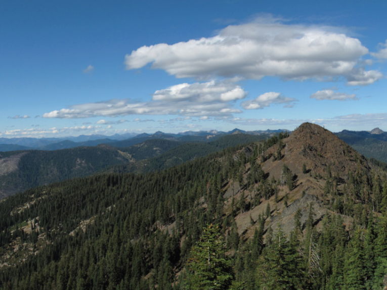 A conifer panorama: Allison Poklemba (far right), climbs to the highest point on the Bigfoot Trail at Packer's Peak in the Trinity Alps Wilderness
