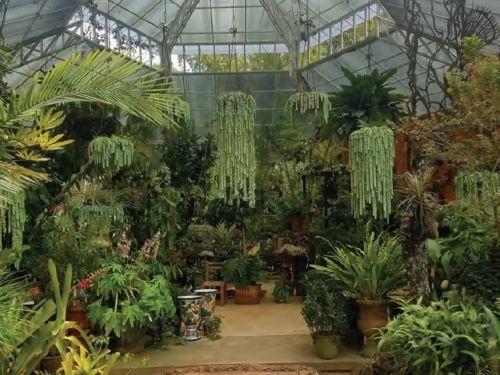 The Vallarta Botanical Garden in Puerto Vallarta, Mexico