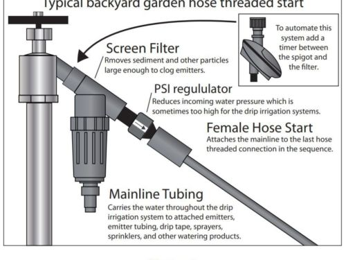 Figure 4 showing the drip irrigation system's mainline tubing and female hose start