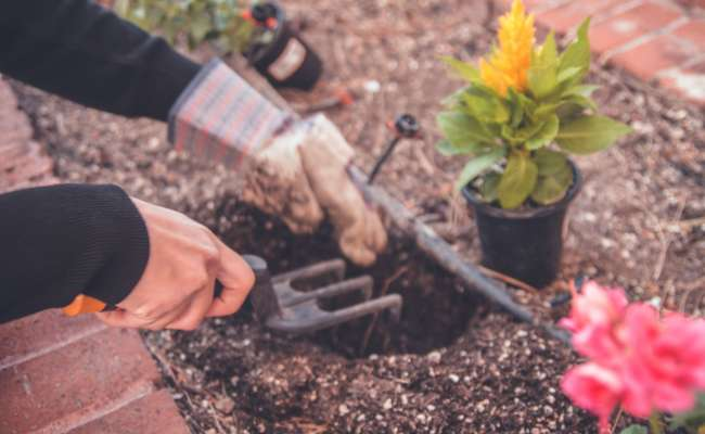 Drip Irrigation System for your Garden