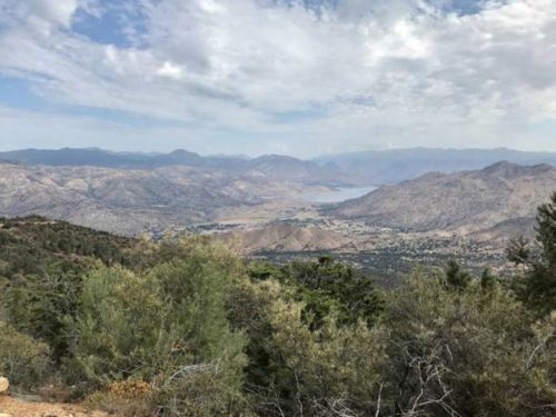 A view of Lake Isabella and its conifer groves