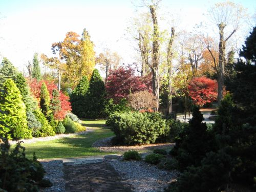 A late afternoon shot of the garden bathed in the soft light of autumn