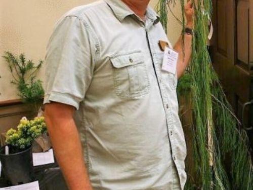 Martin Stone shows off a wonderful Chamaecyparis lawsoniana 'Imbricata Pendula'. Photo by J. Harvey
