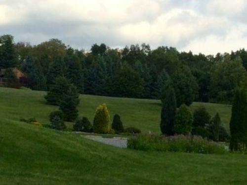 View of the Dwarf Conifer Garden at Graver Arboretum