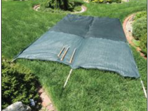Shade cloth to screen sensitive conifers and evergreens from the summer sun