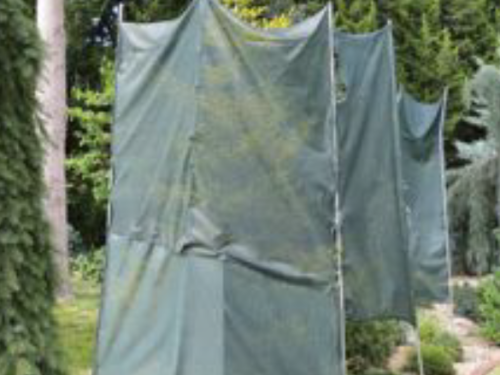 A shade screen shields conifer and evegreen trees and keeps them from burning during hot weathers
