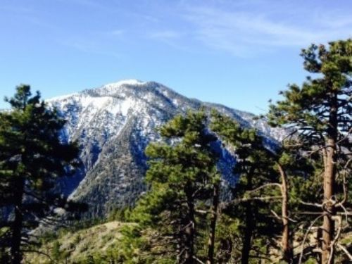 The north face of Mount Baden-Powell as viewed from Grassy Hollow