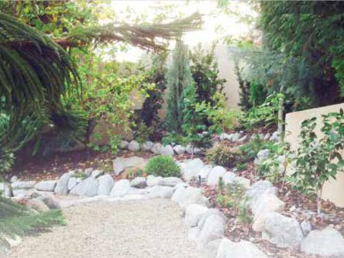 Dan Spear's conifer garden in Orange, California near Los Angeles