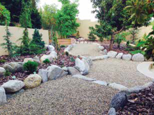 Another angle of the suburban conifer garden
