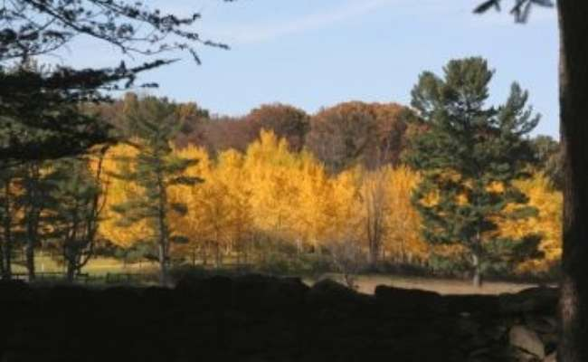 Southeast Reference Garden Grant to State Arboretum of Virginia