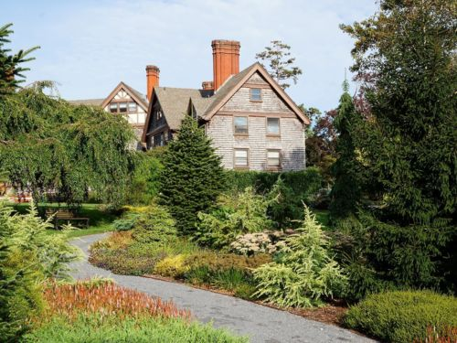 The conifer garden at the Manor House at the BCA. Photo by Heather Coste
