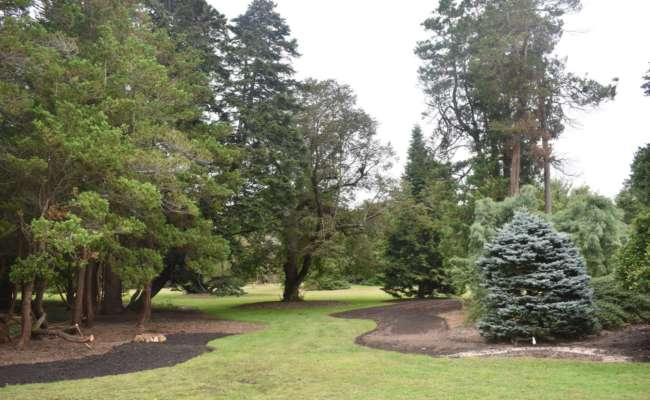 Bayard Cutting Arboretum wins 2020 ACS Iseli Grant